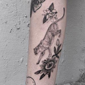 Florida Panther , Passion Vine, Orange blossoms 🐈🍊 Thank you Leslie 🌿. #florida #nature #fineline #blackandgrey #panther #floral #botanical #flower #floridapanther #illustrative #miami #singleneedle #tattoooftheday