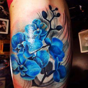 Artist Tiina #blueorchid #flower #orchid