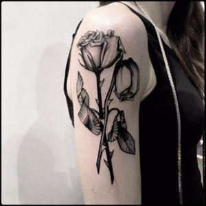 #black #dead #roses #tattoo #blackwork #totemica #ontheroad