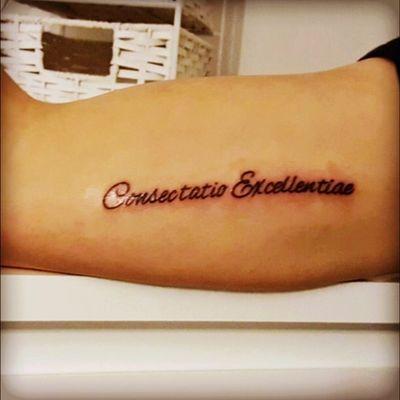 #consectatio#excellentiea #InPursuitOfExcellence #Sunderland #SAFC #football #latin #blackcats