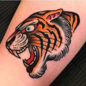 Tiger head #bigcats #samuelebriganti #traditional