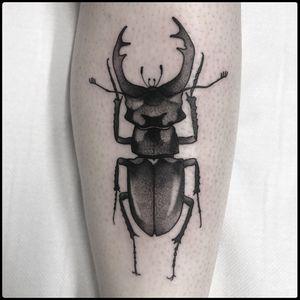 #totemica #tunguska #black #lucanuscervus #stagbeetle #insect #entomology #tattoo #blackworkers #originalsintattooshop
