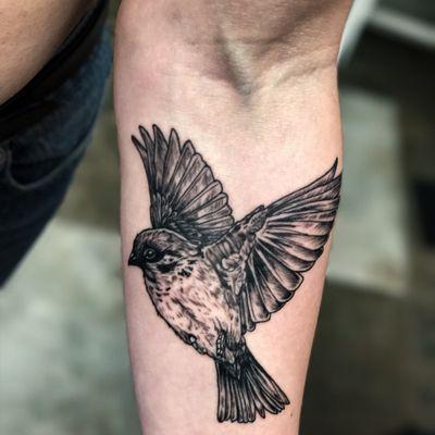 #sparrow#tattoo#bird #blackandgrey #brooklyn#