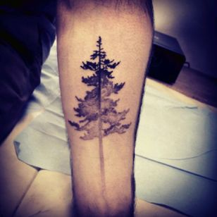 Another tree tatto #tree #fading #forearm #forest