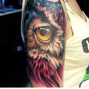 #SandraDaukshta #owl #halfsleeve #animal