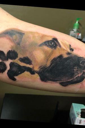 #dogportrait #dogtattoo
