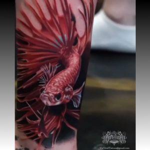 #fightingfish #fish #redfish #colorrealism #realism - #tattoo by #artist #VicVivid @vicvivid