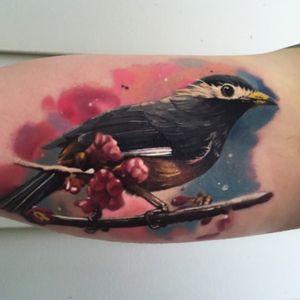 #jakeross #bird