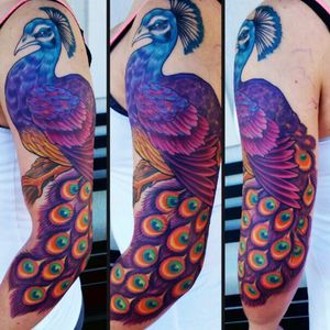 #mattobaugh #peacock #feathers