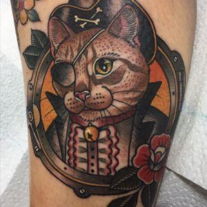 Calf pirate cat