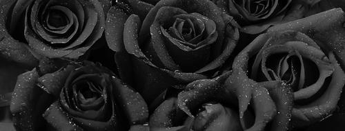 Fleur Noire Tattoo LA